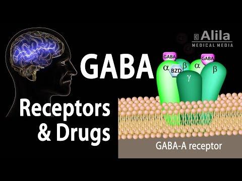 Neuroscience Basics: GABA Receptors and GABA Drugs, Animation