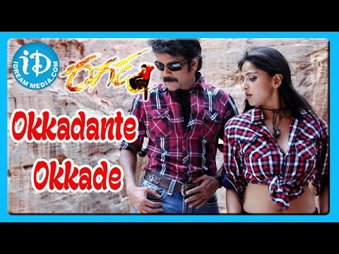 Okkadante Okkade Song - Ragada Movie Songs - Nagarjuna - Anushka Shetty - Priyamani