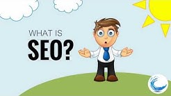 SEO Marketing Dunedin FL, Clearwater, Pinellas County Get Exclusive Area