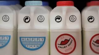 Love story in milk