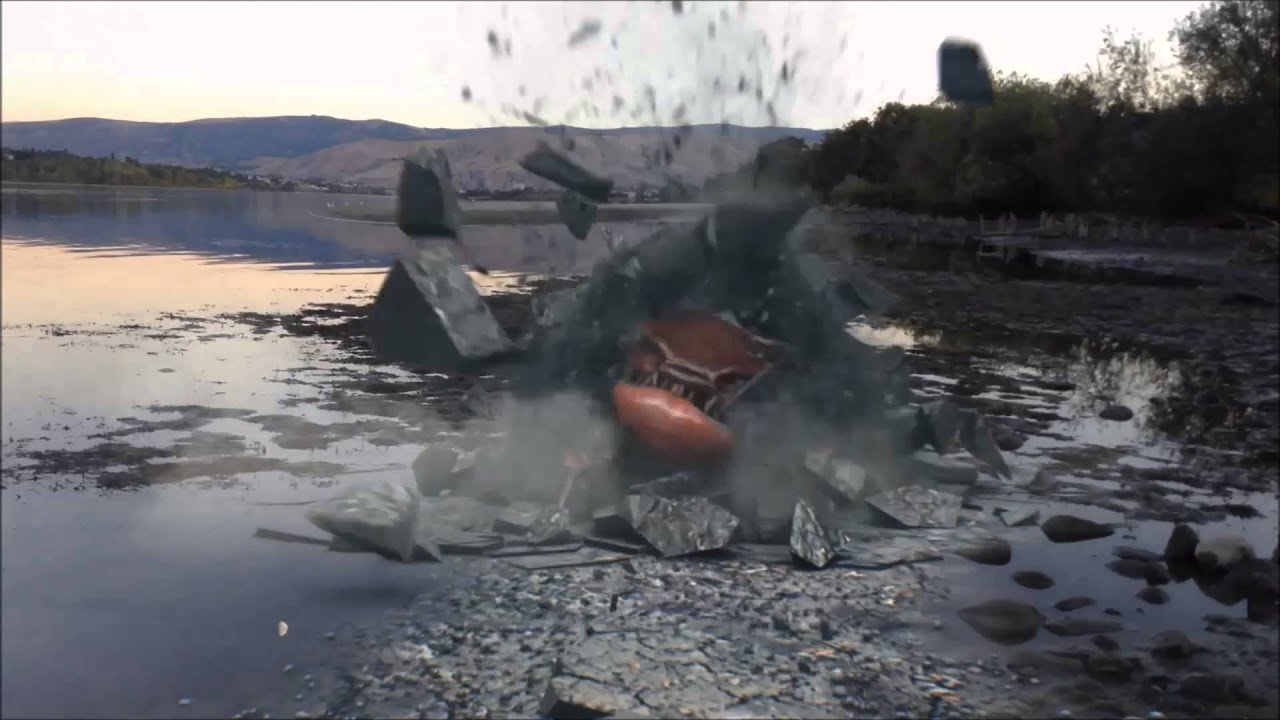 Real Sea Monster Sightings! True or False? - YouTube