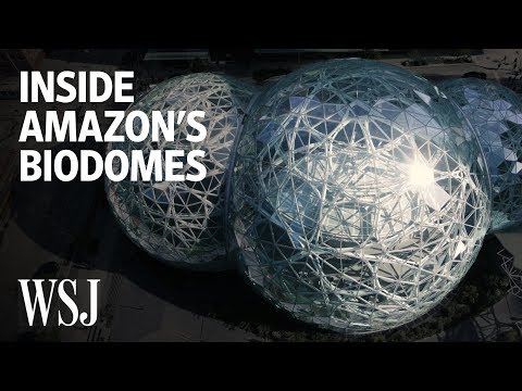Inside Amazon's Spheres, the Biodome Office in Seattle