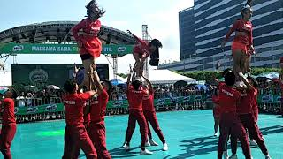 AZGH COLLEGE VIpers Pep Squad