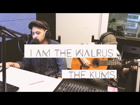 i am the walrus - the beatles (cover)