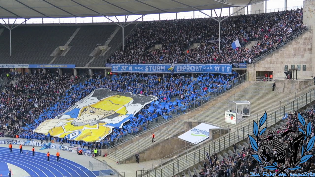 Hertha Bsc Hsv
