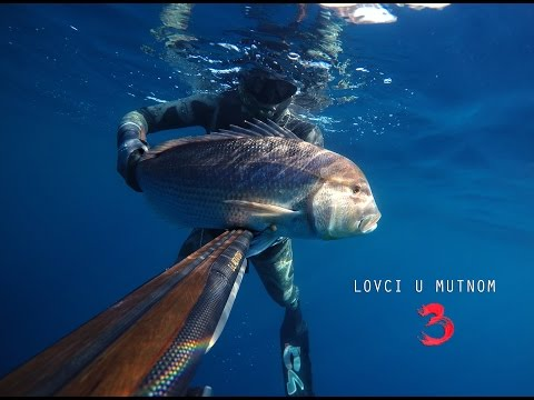 Spearfishing Croatia 2016