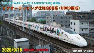 WAKU WAKU ADVENTURE 新幹線 ピクサーラッピング800系(U009編成)