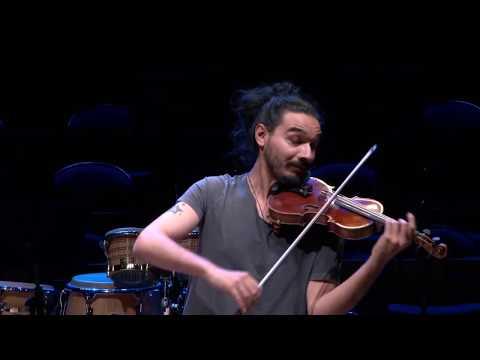 Bach : Partita No.2 - Chaconne (Nemanja Radulovic)
