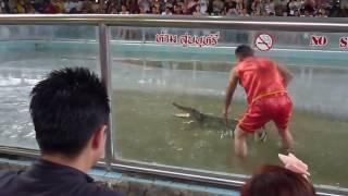 Шок-Шоу крокодилов в Тайланде.