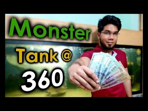 Cost Of My Silver Arowana Tank