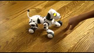Zoomer Dog Зуммер собака