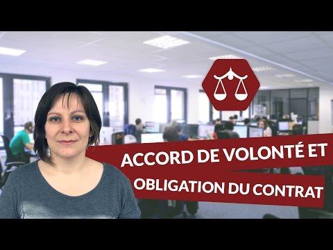 Accord de volonté et source d'obligation du contrat - Droit - digiSchool