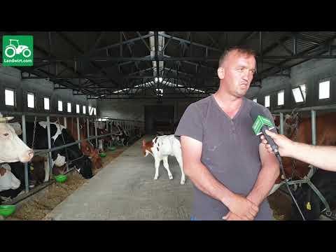 Baixar Ferma për prodhimn e qumështit në fshatin Ratkoc të komuna së Rahovecit