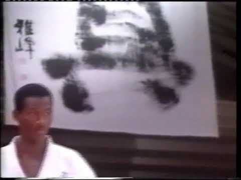 2nd World Weight Category Championships - 2001