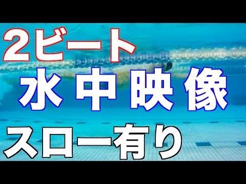 【元水泳日本代表】 2ビート クロール キック スロー テクニック コツ