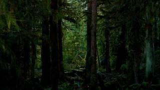 New Moon - Edward leaves - Alexandre Desplat ( from New Moon score)
