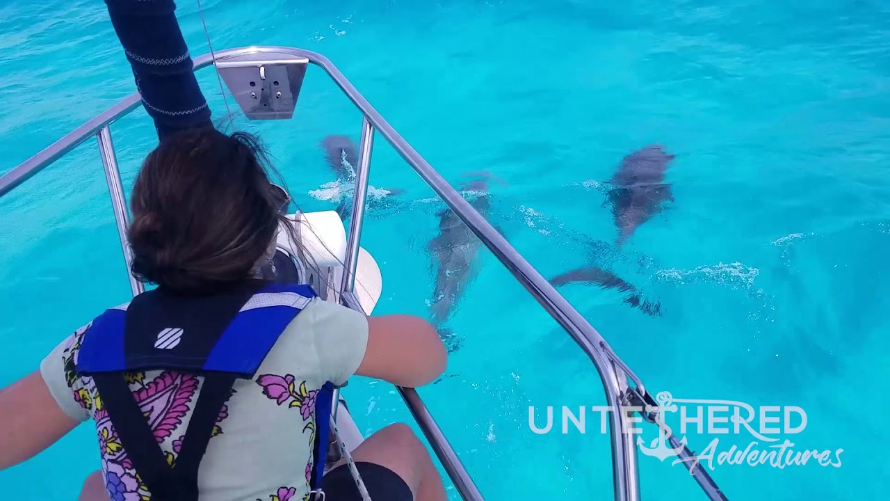 We sailed with dolphins in Hawk Channel!