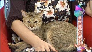 2012.11.29康熙來了完整版 康熙寵物診療室part3