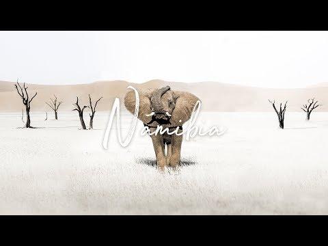 Wildlife of Namibia