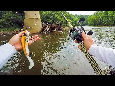 Unexpected Catch In TINY Creek While MUSKY Fishing || 50 State Fishing Tour (PA)