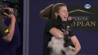 The 2021 Masters Agility Champion: Verb