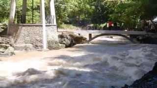 Orang Muntok Bangka ke Bantimurung - Maros Sulawesi Selatan usai hujan .. April 2013.