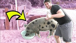 WE WENT TO PIG ISLAND!!!