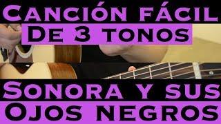 Sonora y sus Ojos Negros - Cancion Facil de 3 Tonos para Principiantes (Tutorial Guitarra)