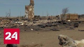 Смотреть видео Огненная земля. Специальный репортаж Александра Лукьянова - Россия 24 онлайн