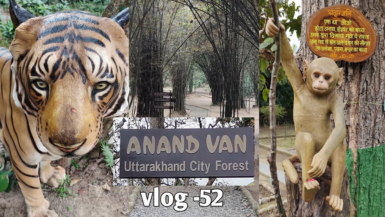 Download Anand van   urban forest   picnic point    Beauty place    #vipinlavifunclub