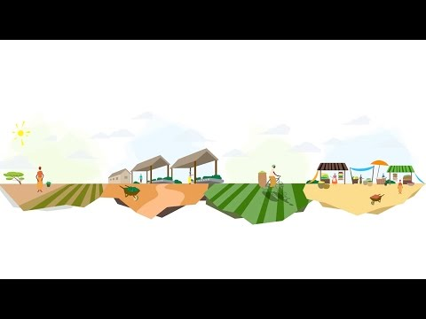 Powering Agriculture: An Energy Grand Challenge for Development