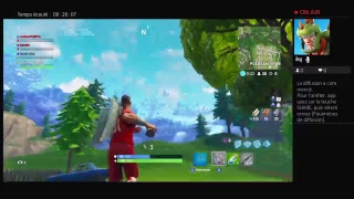 Fortnite game with the new skine world shot