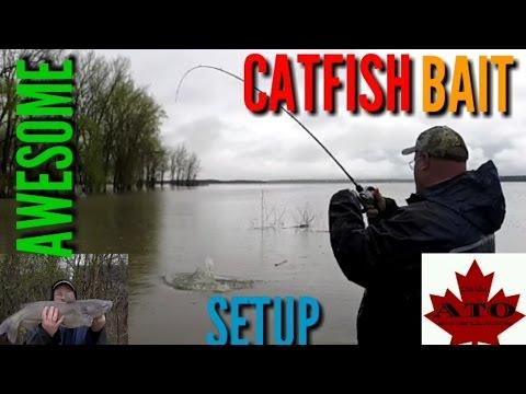 Awesome Chicken Liver Catfish Bait Setup
