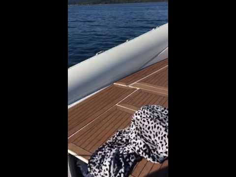 Gerald the seal, additional footage. Orcas hunting seal