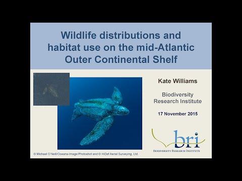BRI Webinar: Mid-Atlantic Baseline Study