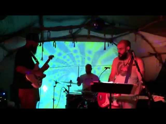 Eyeshadows / Gnats On A Mule's Hide LiVE!!! at the ELECTRiC FOREST O))