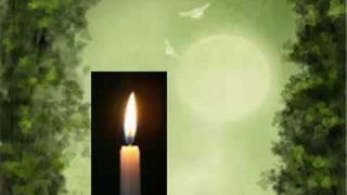 Peter Gabriel - OVO - Low Light