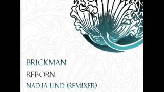 Brickman - Pacific (Original Mix) [ Dub Techno ]