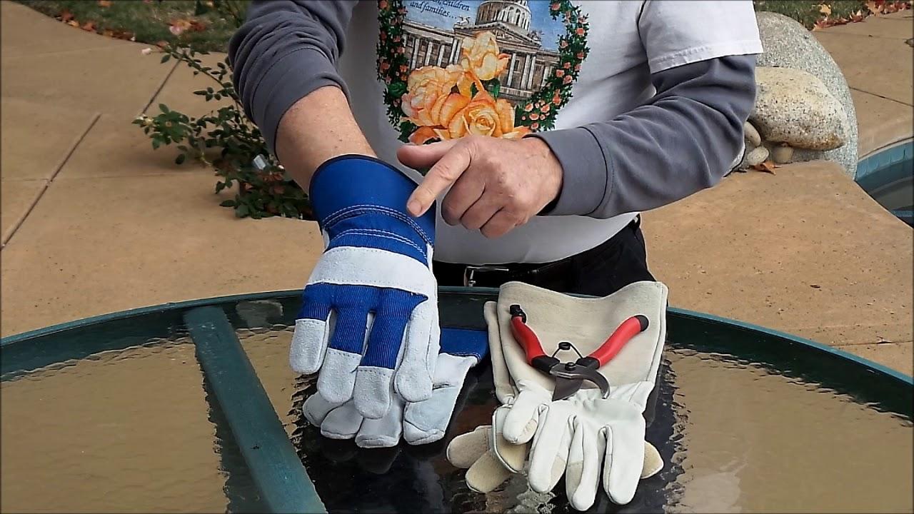 10 meilleurs gants de jardinage pour les épines