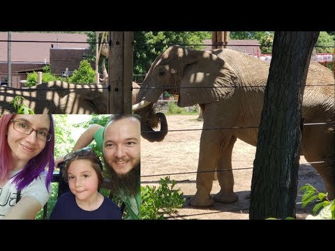 trip-to-the-zoo--vlog