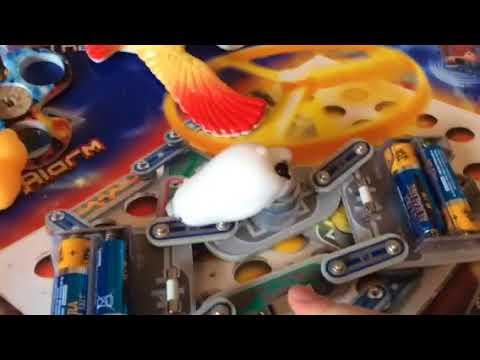 Fastest spinning polar bear!- science experiment
