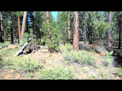 Camping in Lassen National Forest   Day 2   Part 2
