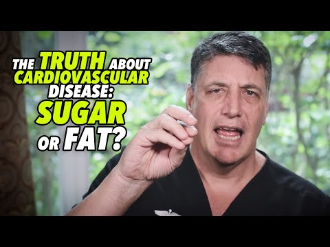 ABSOLUTE EVIDENCE; THE TRUTH ABOUT CARDIOVASCULAR DISEASE: SUGAR OR FAT? - by Robert Cywes