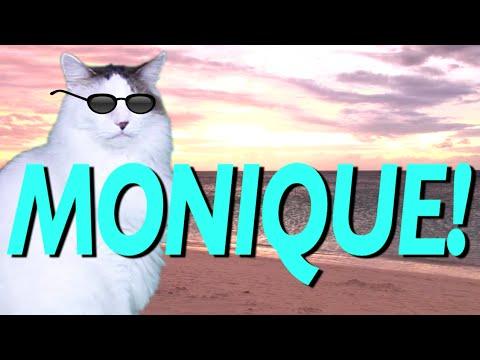 happy birthday monique HAPPY BIRTHDAY MONIQUE!   EPIC CAT Happy Birthday Song   YouTube happy birthday monique