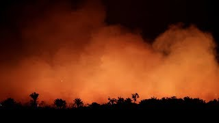 Amazon rainforest fires: vast swathes of rainforest burning at record rate