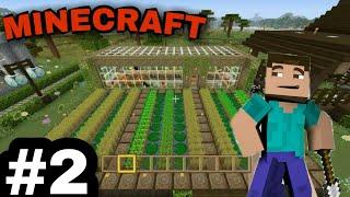 I start farming iฑ Minecraft | MINECRAFT👍👍👍👌👌
