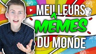 LES MEILLEURS MÊMES DU MONDE ! - TIM