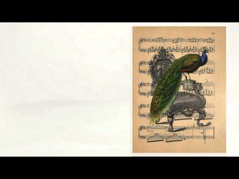 Винтажные картинки для творчества. Красивые птицы