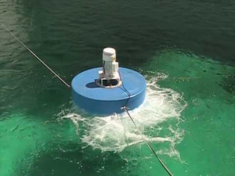 Aireadores ta de doovi for Como oxigenar el agua de un estanque sin electricidad