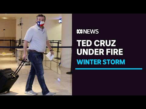 Texas senator Ted Cruz flies to Mexico as storm leaves millions without clean water | ABC News